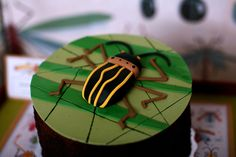 Bugs & Insects Birthday Party Ideas