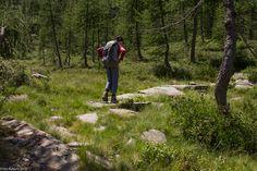 In der Natur unterwegs: Vier Täler, drei Pässe im Locarnese - Wandern durch wunderschöne Landschaften - #ExpeditionLocarnese