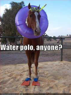 "Lol i hate it when people ask me if i play water polo with horses! Its like ""Hahahaha! Oh you were serious... No."""