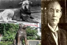 Given away after his master's death, Hachikō routinely escaped, returning again and again to his old home. After realizing Professor Ueno no longer lived there, he went to the train station every day waiting for his owner's return. As a permanent fixture, attracting attention of other commuters who would bring him treats and food. This continued for nine years with his appearing precisely when the train was due at the station until he died on March 8, 1935, and found on a street in Shibuya.