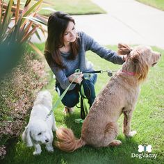 Get a pupsitter.  That way, they can have a fun staycation while you're dealing with airport lines (ugh). If you don't already have a good friend or family member who's able to watch 'em, DogVacay is a great site to find a reliable, trusted pupsitter.