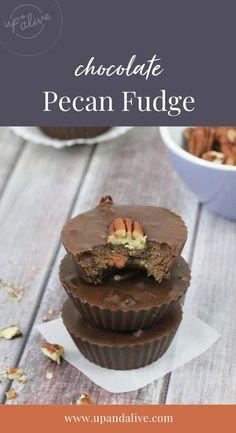 Chocolate Pecan Fudge Easy Chocolate Fudge, Paleo Chocolate Chips, Homemade Hot Chocolate, Healthy Chocolate, Chocolate Desserts, Fudge Recipes, Whole Food Recipes, No Bake Desserts, Pecan