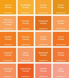 Sunrise Orange, Creamsicle Orange, Starfish Orange