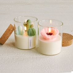 Terrarium Candle Cactus Candles Flower Candles funnygifts Zoe Tang s hand-poured scented miniature cactus and poppy candles are meticulously detailed super adorable and smell like heaven Aromatherapy Candles, Scented Candles, Candle Jars, Perfumed Candles, Candle Holders, Beeswax Candles, Candle Set, Candle Gifts, Incense Holder