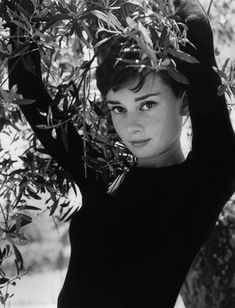 ~Her expression reminds me of Pearl's at times | Audrey by Philippe Halsman