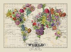 map of the world in full bloom