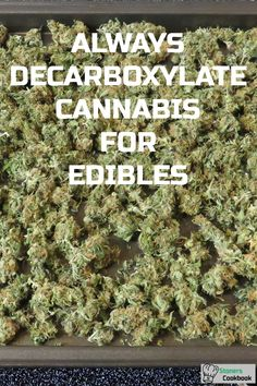 Always decarboxylate cannabis when making edibles. This is done by heating cannabis in the oven in order to convert THCA to THC. This step is necessary to feel the effects of edibles. #decarboxylation #makingedibles #cannabisrecipes Special Recipes, Great Recipes, Weed Recipes, Cooking Recipes, Butter Recipe, Body Lotion, How To Dry Basil, Cannabis, Salad
