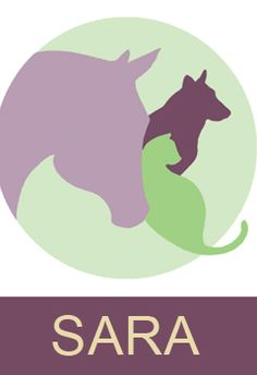 Animal Reiki Source - All the latest news, classes, resources and information about Animal Reiki.