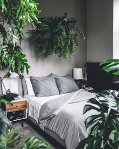 Bedroom Decor Fascinating Ideas On A Budget For Boho Bedroom With Plants A. - Dreamhome Bedroom Decor Fascinating Ideas On A Budget For Boho Bedroom With Plants A. Tropical Bedrooms, Tropical Bedroom Decor, Decoration Plante, Bohemian Bedroom Decor, Minimalist Bedroom, My New Room, Home Bedroom, Modern Bedroom, Garden Bedroom