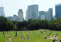 Sheep Meadow in Central Park. Although today the Park's largest lawn without ballfields features people it was originally the home to a flock of pure bred sheep from 1864 until 1934. The sheep and shepherd were housed in a fanciful Victorian building nearby, what became the famous Tavern on the Green restaurant in 1934.
