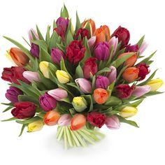 Mixed tulips from Euroflorist