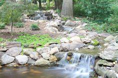 Natural Koi pond and stream #exterior #design