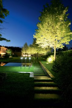 Lighting Deck Lighting, Tree Lighting, Landscape Lighting, Steep Gardens, Small Gardens, Garden Landscape Design, Landscape Architecture, Night Garden, Plantar