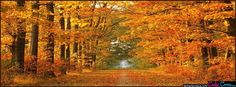 Fall - Facebook Covers - We have the best facebook timeline cover photos to choose from.