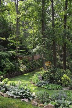 Large Forest Gardening With Tall Trees And Rocks : Environmentally Forest Gardening In Your Yard Backyard Trees, Backyard Shade, Shade Garden, Pergola Shade, Big Backyard, Backyard Pergola, Terraced Landscaping, Front Yard Landscaping, Landscaping Ideas