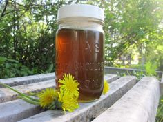 Dandelion syrup - sunshine in a jar! 300 dandelion flowers, an organic lemon, water, sugar. Herbal Remedies, Home Remedies, Natural Remedies, Dandelion Recipes, For Elise, Jam And Jelly, Wild Edibles, Liqueur, Kitchen Witch