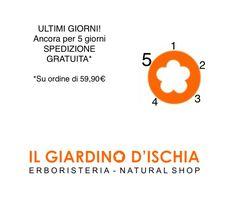 40 Ischia Ideas Ischia Ischia Italy Italy