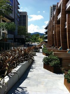 Canberra's New Acton Precinct incorporates art, retail, hospitality facilities and apartment complexes. Apartment Complexes, Urban Design, Awards, Sidewalk, Australia, Park, Architecture, News, Group