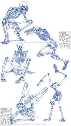 """mamamidnight: """" anatoref: """" Skeletons Row 1 Row Left, Right Row 3 Row 4 """" """" Oh look, it's some of my skeleton studies from the LASALLE days. Skeleton Drawings, Skeleton Tattoos, Human Skeleton, Skeleton Art, Anatomy Sketches, Art Sketches, Art Drawings, Human Anatomy Drawing, Human Figure Drawing"""