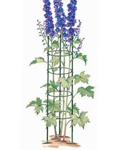 Lovely Tall Plant Supports