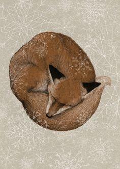 dahvmandasz: Sleepy fox is already dreaming of winter.