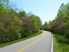 The historic Natchez Trace trail was used by native Americans, early explorers, and Mississippi River boatmen. After falling into disuse it was revived into the modern day Natchez Trace Parkway Early Explorers, Natchez Trace, Spring Time, Places Ive Been, Scenery, Country Roads, Lee Road, Photo Credit, Stretches