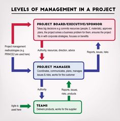 [Diagram] The 3 levels of management in a project - Agile project management explained!