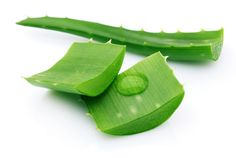 El ABC del Aloe vera para el pelo - BLOVVER