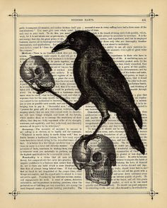 Raven Crow with Skulls HALLOWEEN Skulls Art Print by BlackBaroque
