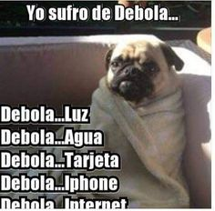 Spanish Humor, Spanish Quotes, Funny Images, Funny Pictures, Mexican Humor, Jurassic World, Just For Laughs, Funny Cute, Bts Memes