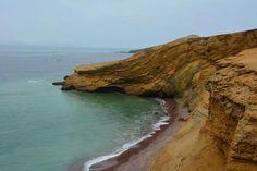 Au coeur de la réserve.  Paracas, Pérou. De Lima à Nazca