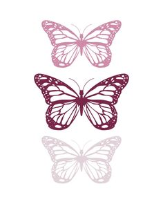 Spring-Butterfly-Purple