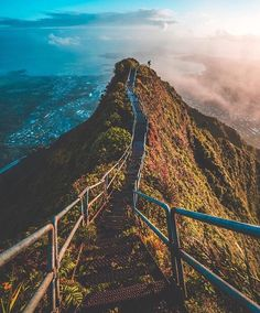 "|   pinterest & instagram • emilyswartzer  | Haiku Stairs ""Stairway to Heaven"", OAhu, Hawaii"