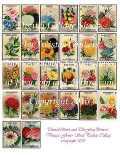 Vintage Flower Seed Packets Digital Collage by TwistedTrinkets, $2.99