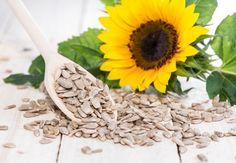 Para qué sirven las semillas de girasol? Algunas de las bondades que podemos destacar de las semillas de girasol son:  Mejoran la circulación Esto se debe a los ácidos grasos, que tienen la capacidad de reducir el riesgo de padecer problemas circulatorios, cardíacos o cardiovasculares, como puede ser el infarto de miocardio.  Son excelentes para los deportistas Contienen mucho potasio y magnesio, siendo fundamentales en los planes de alimentación de los que entrenan de forma profesional…