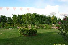 Отзывы об отеле Fantazia Resort Marsa Alam 5*(Марса Алам)