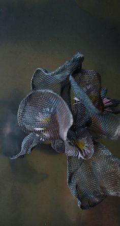 Beautiful. Black Iris ring   SHINJI NAKABA (steel mesh)