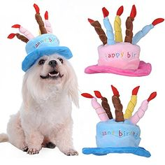 Yunt Cute Pet Dog Puppy Cat Happy Birthday Party Hat with Cakes & 5 Colorful Candles Dog Birthday Cosplay Costume Party Supplies(Blue) - http://partythings.com/yunt-cute-pet-dog-puppy-cat-happy-birthday-party-hat-with-cakes-5-colorful-candles-dog-birthday-cosplay-costume-party-suppliesblue.html