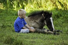 Boy and foal