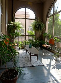 Comfortable sun room with large, arched windows