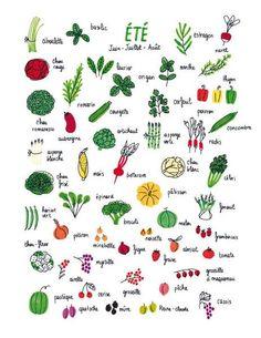 légumes et herbes aromatiques