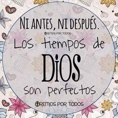 Los tiempos de Dios son perfectos.