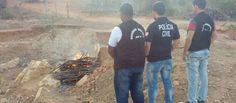 Polícia Civil incinera 80 kg de maconha apreendida em zona rural http://ift.tt/2v4w7pK