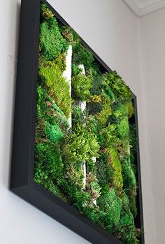Visit my Etsy Shop to purchase your own piece of gorgeous moss wall art! They look alive and vibrant, but require NO MAINTENANCE or CARE!                      Click here to order your one of a kind...Read More