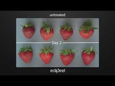 When You Cover Produce In This Invisible, Edible Coating, It Lasts Twice As Long | Co.Exist | ideas + impact