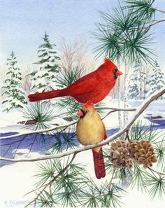 Cedar Farm Cardinals II by Maureen McCarthy