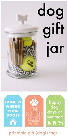 51 christmas gift in a jar ideas mascotas navidad y frascos do it yourself gift basket ideas for all occassions dog gift jar idea via aj solutioingenieria Choice Image