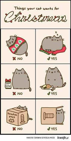 What cats want for Christmas?