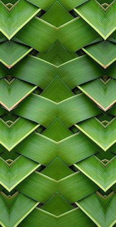 Green | Grün | Verde