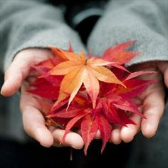 9 Healthy Reasons to Love Fall - Healthy Living Center - Everyday Health